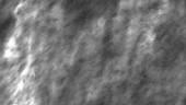 Micrograph of nanoclays in plastic matrix. COURTESY OF NANOCOR INC.