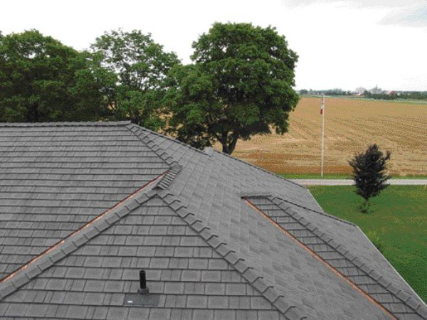 Long lasting beauty: Wellington Polymer Technologies offers a 50-year warranty on its natural-fibre plastic composite roofing product, Enviroshake.