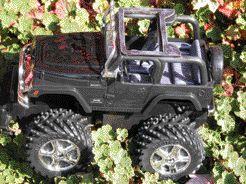 This rollbar jeep is equipped with Integral Technologies Inc.' PlasTenna.